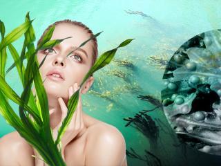Морские водоросли – сырье для косметики